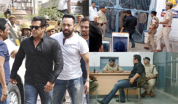 salman-khan-convicted-on-black-buck-poaching-case