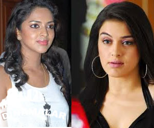 Hansika Motwani has snatched the opportunity to Amala paul!