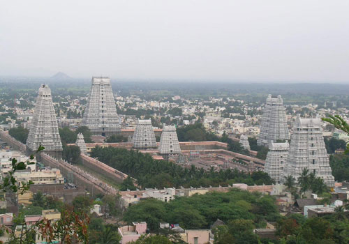 Image result for tiruvannamalai temple