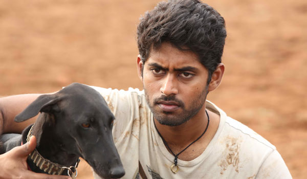 Pariyerum-Perumal-selected-for-GOA-film-festival