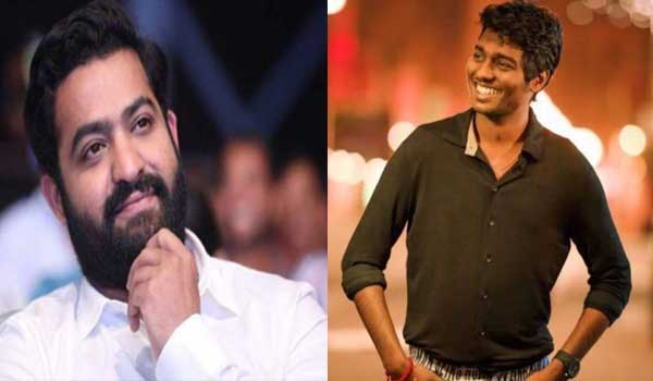 atlee-to-direct-junior-ntr