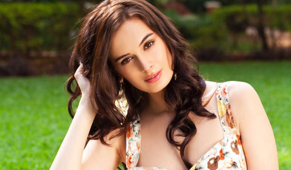 Evelyn-Sharma-searching-movies-in-Kollywood