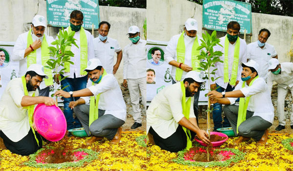 Sharwanand-adopts-park-and-sappling-plant