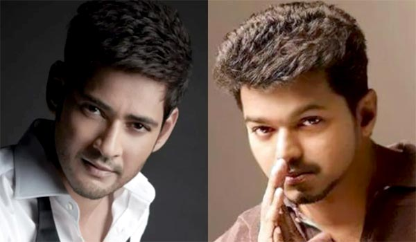 Did-Vijay-accepts-Maheshbabu-challenge