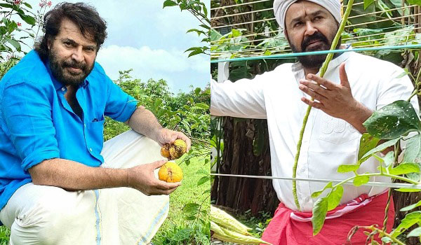 Mohanlal-Mammootty-call-to-set-up-nature-garden