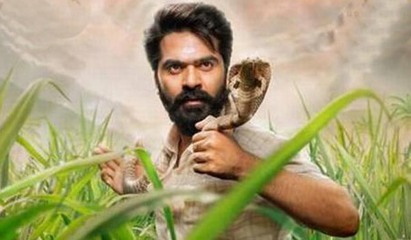 Simbu-again-got-notice