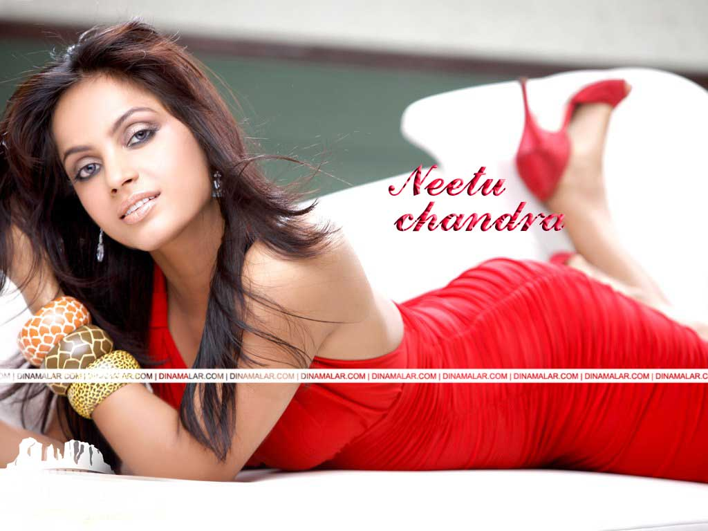 Tamil Actress Wall paper Neethu chandra